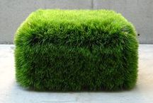Landscaping modern.