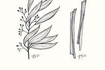 Flowers & Trees / Hand drawn flowers, Wild Flowers, Flower Tattoo Ideas, Flower Doodles, Watercolor Flowers