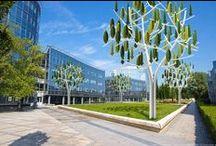 MFC Rottevalle / Voortgang en Cradle to Cradle elementen in het nieuw te bouwen Multifunctioneel Centrum Rottevalle.