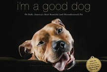 Dog Reads / Books for learning and inspiration-- http://pitlandia.blogspot.com/