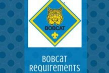 Bobcat | Cub Scouts / Check out these fun ways to help your Cub Scouts earn their Bobcat rank badge.