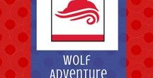 Air of the Wolf: Wolf Adventure | Cub Scouts / Creative ways to implement the Wolf Cub Scout adventure, Air of the Wolf