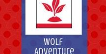 Grow Something:  Wolf Adventure | Cub Scouts / Looking for the requirements for the Wolf Cub Scout adventure, Grow Something?  Look no further!  In addition to requirements, you'll find some great ideas for your Wolves.