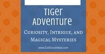 Curiosity, Intrigue, and Magical Mysteries: Tiger Adventure | Cub Scouts / Your Tigers will love these Curiosity, Intrigue and Magical Mysteries ideas.