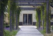 Strakke tuin met water / Strakke tuin met water - Esselink Hoveniers