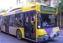 Travel: Transportation