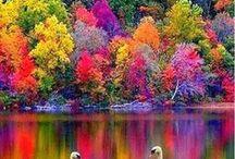 Travel: Autumn Colours
