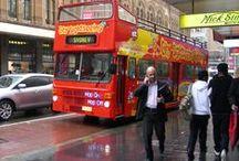 Travel:  Hop-On Hop-Off Bus