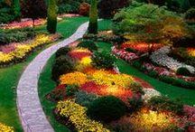 Garden: Designs