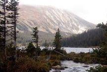 Wilderness / Wild Places