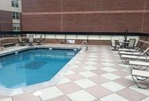 Totally Renovated Roof Top Swimming Pool / Totally renovated roof top swimming pool @Zen Apollo - Apartments for Rent in NW DC: 1 - Stripping Pool Surface; 2 - Custom Logo - Zen Apollo; 3 - Diamond Brite - French Gray Color; 4 - Black Tile