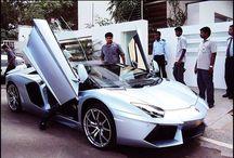 Lamborghini fans