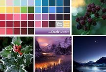 My Colors / My Colors, color palette B, cold-dark, bright high contrast, dark winter