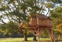 In the Trees / Treehouses, leafy structures, and maybe a bird or two? #glamping