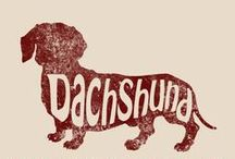 Dachshund Love / by Tamra Green