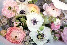blooms & pretties. / by K.slademade