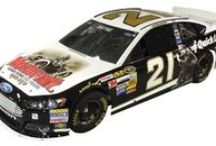 2013 NASCAR Sprint Cup Schemes