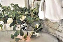 Salles de bain inspiration