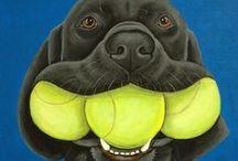 Pádel & Tenis / Diferent photos of pádel & tenis