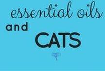 Essential Oils and Cats / Read more ---> UsingEOsSafely.com/safecats
