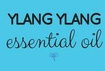 Ylang Ylang Essential Oil / Take the free class and get all the info here ---> UsingEOsSafely.com/ylangylangEO