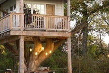 Tree House / by French Country Renovation