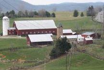 "Farm Life ""Loving it"""