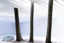 Vegetal & Architecture