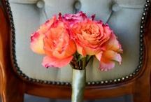 Captivating Coral / The blending of pink & orange, from light peach flowers to bright, bold coral.