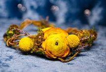 Sunny Yellow / by ZuZu's Petals Austin