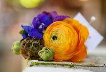 Outstanding Orange / by ZuZu's Petals Austin