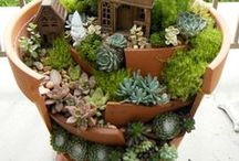 Enchanting Fairy Gardens / Get inspired by these fun gardens!