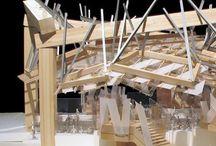 Model / Architecture