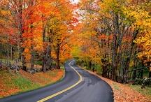 Autumn Getaways..