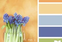 Color Palettes / For collecting interesting color palettes for current or future projects.