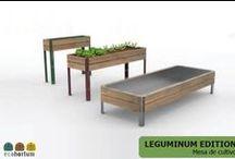 Mesas de cultivo / Mesas de cultivo para huertos urbanos y huertos en casa. Innovación, diseño y ecología a tu servicio. #veggiefriends #huertoencasa #huertourbano
