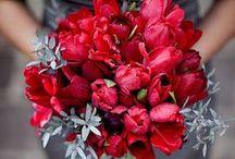 Bouquet de Mariée Rouge - Red/Cherry Bride Bouquet