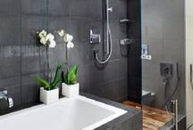 Shower Ideas / Shower designs for small, medium and large bathrooms.