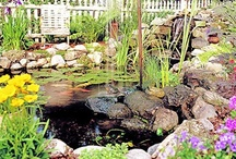 ( Water Gardens Diy ) / DIY Water Gardens ~ Enhance your garden with the quiet beauty or stunning majesty of water. ~ DIY Group Boards ~ If You Want To Join A Board, Please Mention In The (ADD A COMMENT) Section of Any (Add Me!) Pins On The First (ADD ME BOARD) Which Board(s) You Want To Join (Up-To 25 Boards) And I Will Do The Rest. Invite your friends to Pin along. Please Pin What Is Appropriate For That Board. No Spam, No $ Signs.