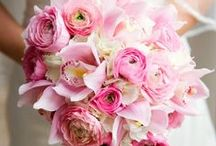 --- Wedding Flowers ---