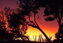 Sunrise / Good morning!