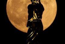 Moon/Supermoon / Good night