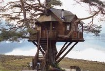 ~ TREES AND TREE HOUSES ~