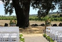 Celebrations at deLorimier Winery