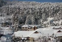 Manali / Bliss and Blossom Cottage near Hadimba  Devi Temple,  Manali For queries email- deeb794@gmail.com / by creations unlimited