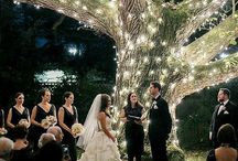 Wedding Ideas / Visual ideas for your wedding day that will help make wedding photos very special