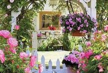For the garden / Ideas for my garden
