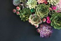Green | and inspiring | / Amazing ideas with green elements or flowers!