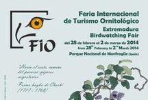 Eventos y Fiestas de Interés Turístico de Extremadura / La Feria Internacional de Turismo ornitológico más importante del sur de Europa