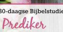 BIJBELBOEK Prediker / Bijbelstudies over Prediker, Bijbelteksten en andere dingen over het Bijbelboek Prediker. Gratis werkboek beschikbaar. #bijbelstudie #flourishlikeapalmtree #printable #freeprintable #prediker #biblestudy #goodmorninggirls #bijbelboekprediker
